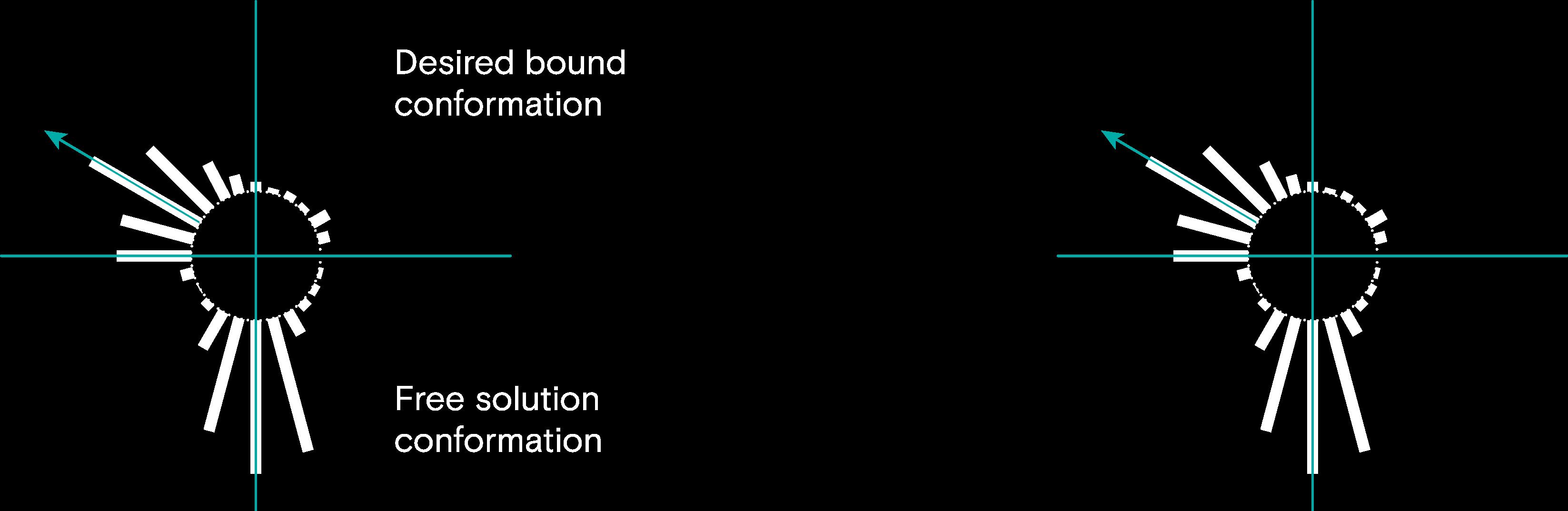 conformational 1