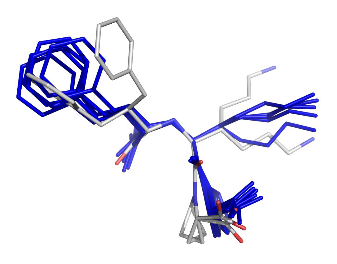 Conformetrix molecule design