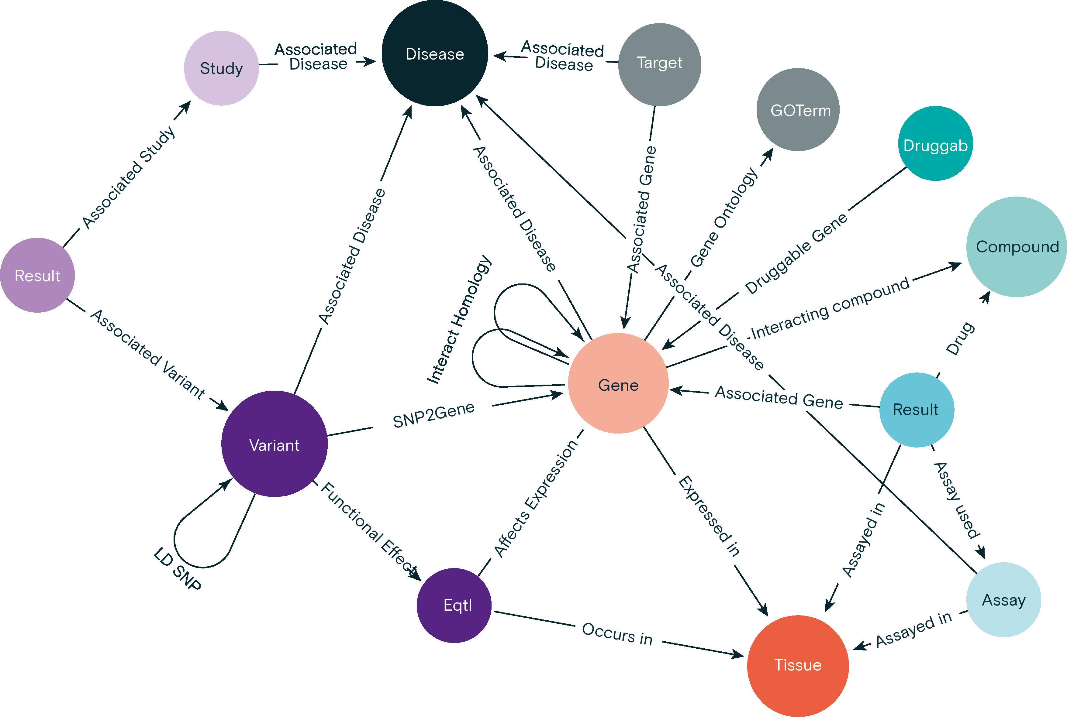 Target gene-disease prioritisation Knowledge Graph