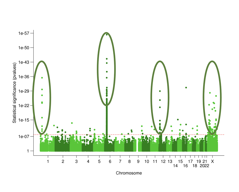 Taxonomy3® Methodology generating multiple peaks